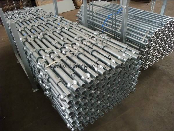 Cuplock Scaffolding Ledger Hot DIP Galvanized Scaffold